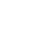 Mobile Voting Project | Client Logo Alect Political