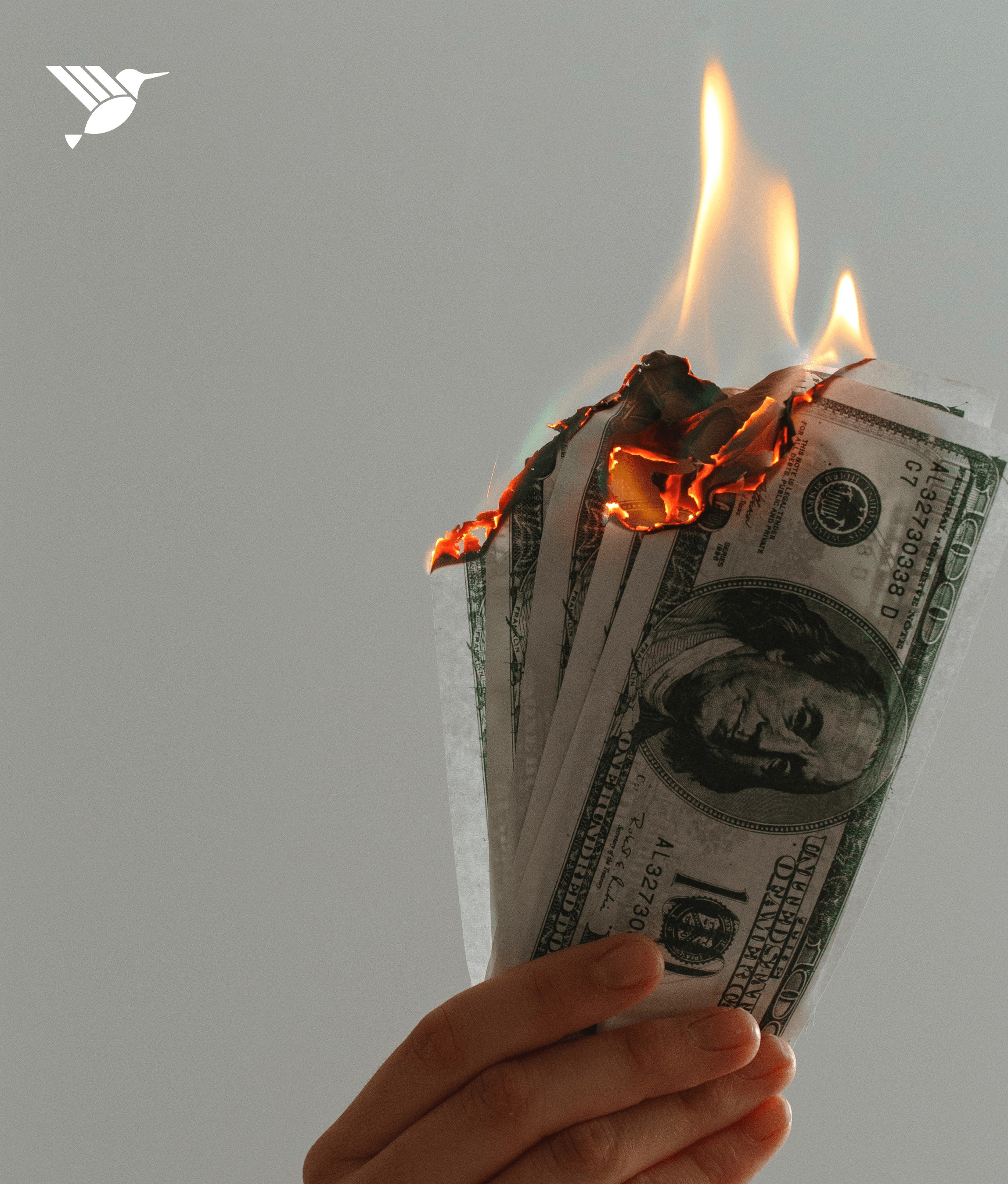 US Dollars in a hand getting burnt