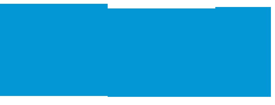 Pan American Health Organiztion logo