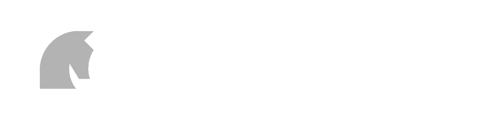 Two Knights Defense (2KD) white logo version.