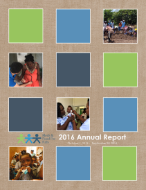 2017 annual report cover blocked colors