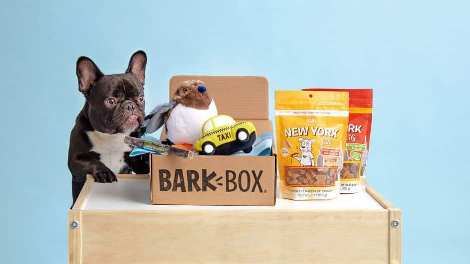 Bark Box's fun pet content all started with doggie unboxing videos.