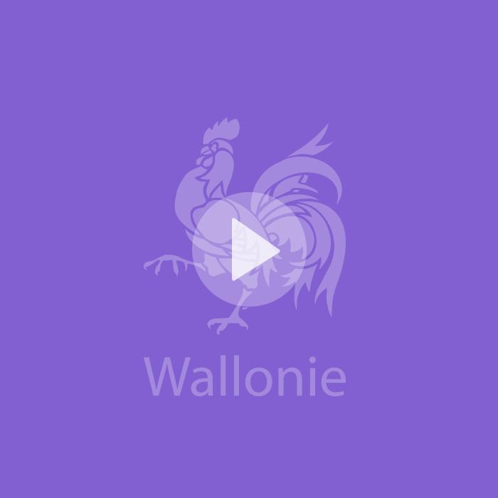 Organisation de l'événement Wallonia Inspiration Network pour la Région wallonne
