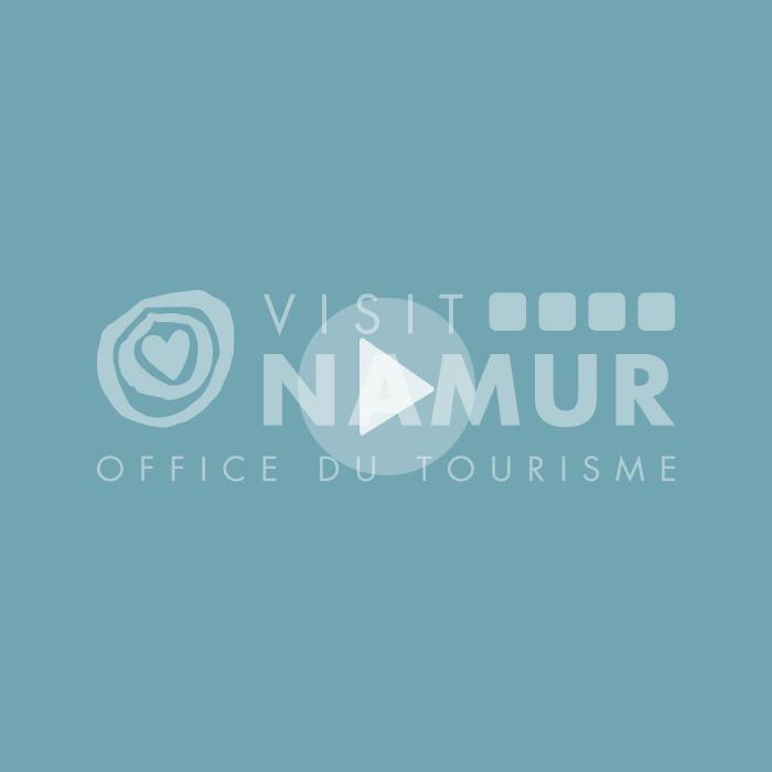 Organisation complète de la campagne VisitNamen en vue d'attirer le public flamand à Namur