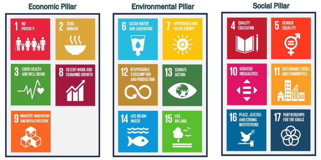 The SDGs