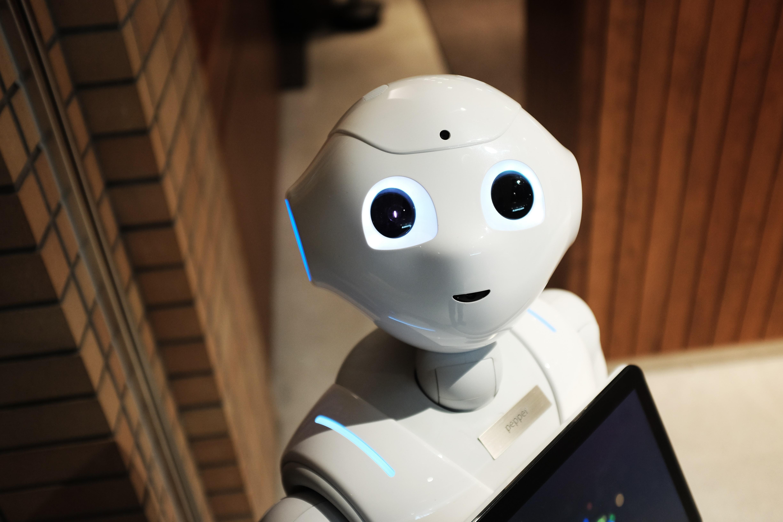 Humanoid robot looking at the camera
