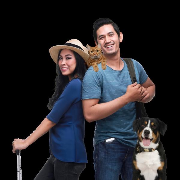 discover pet care