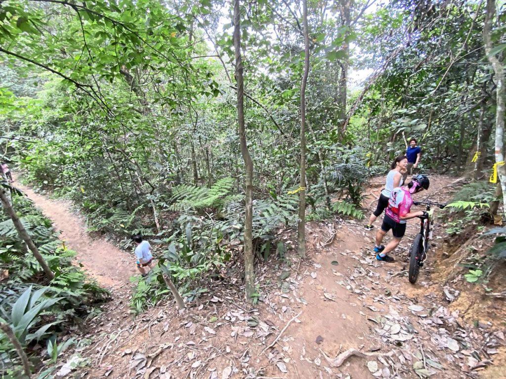 Dog Friendly Hiking Trail