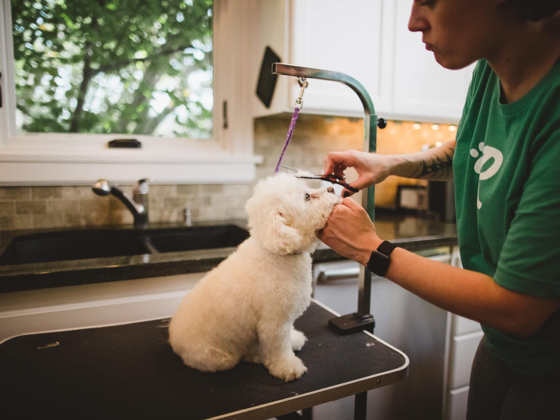 How to Attract Loyal Customers for Pet Business