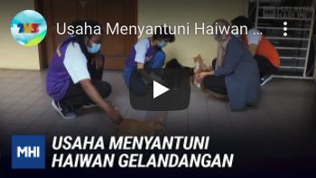 USAHA MENYANTUNI HAIWAN GELANDANGAN   MHI - Part 1