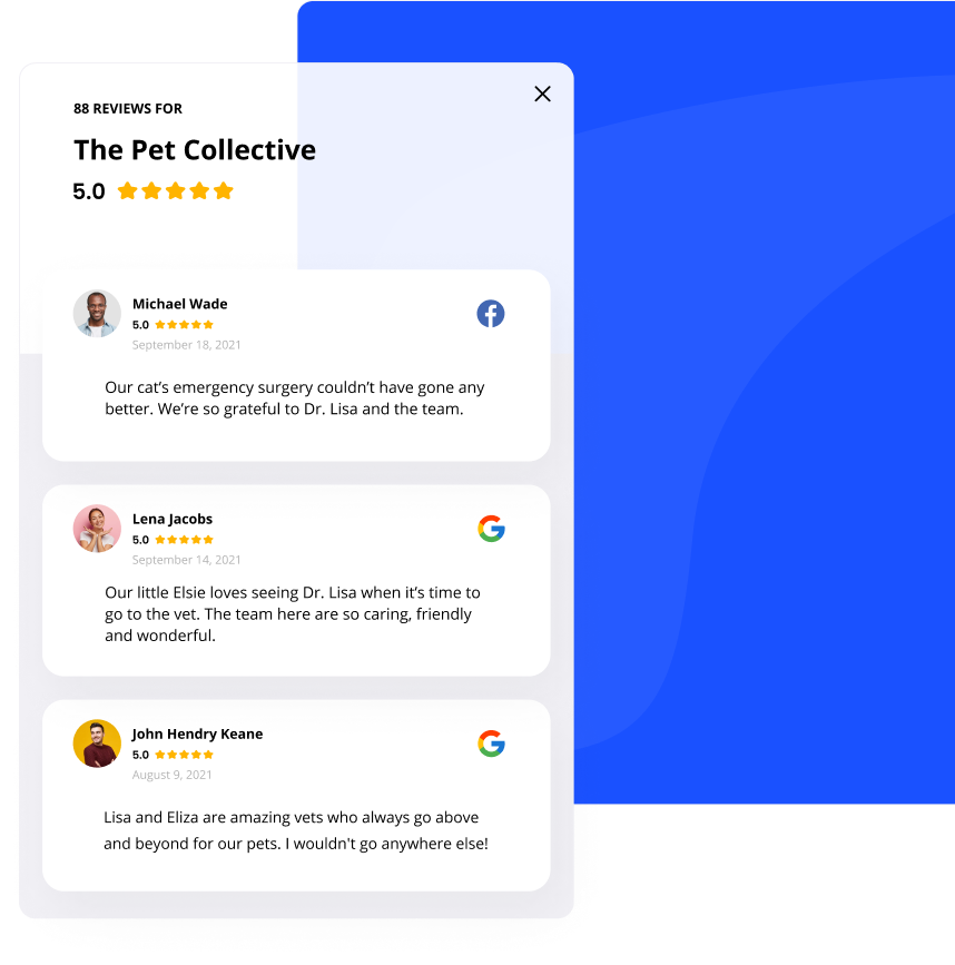 Review widgets for wordpress, shopify or any other platform