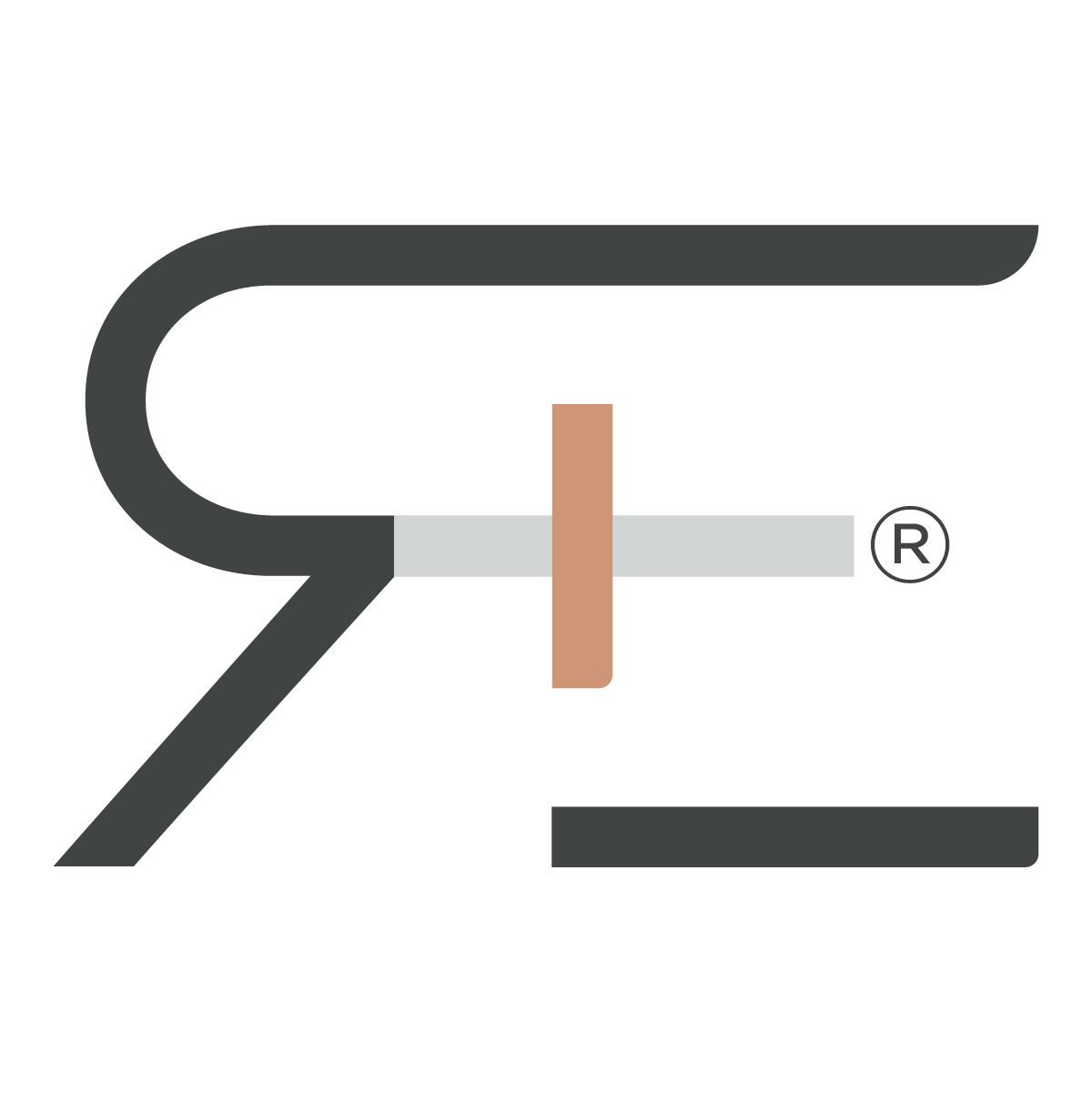Racial Equitecture logo for anti racism programs by The Equitect company