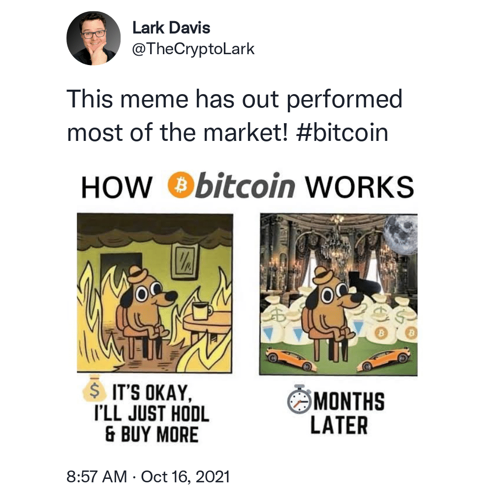 TheCryptoLark