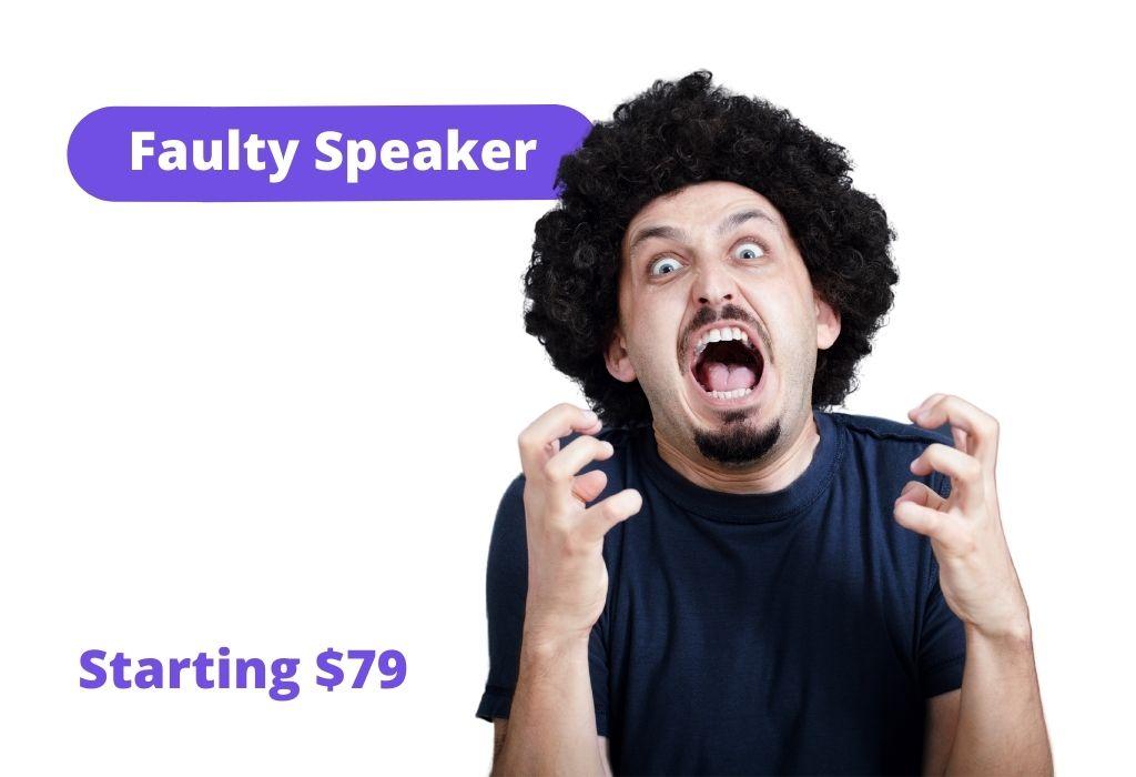 Faulty speaker: Starting $79