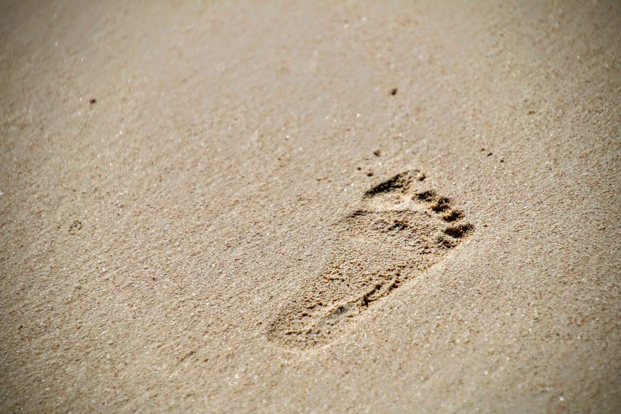 Baby Steps: Moving Your Practice into Advisory Services