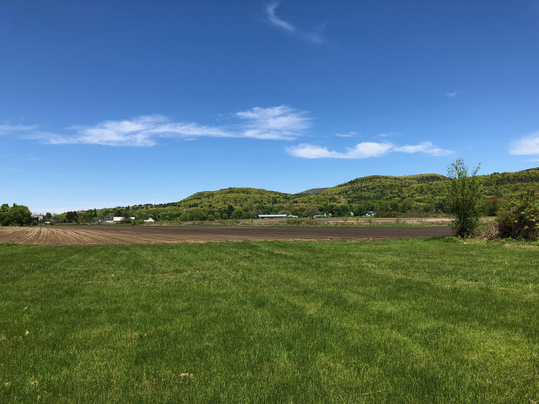 View of the pasture and hills by Reed Farm in Sunderland, Massachusetts