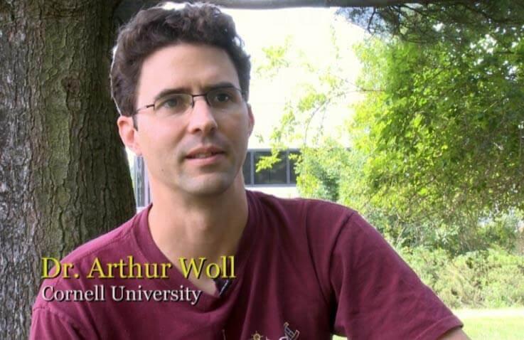 Dr. Arthur Woll