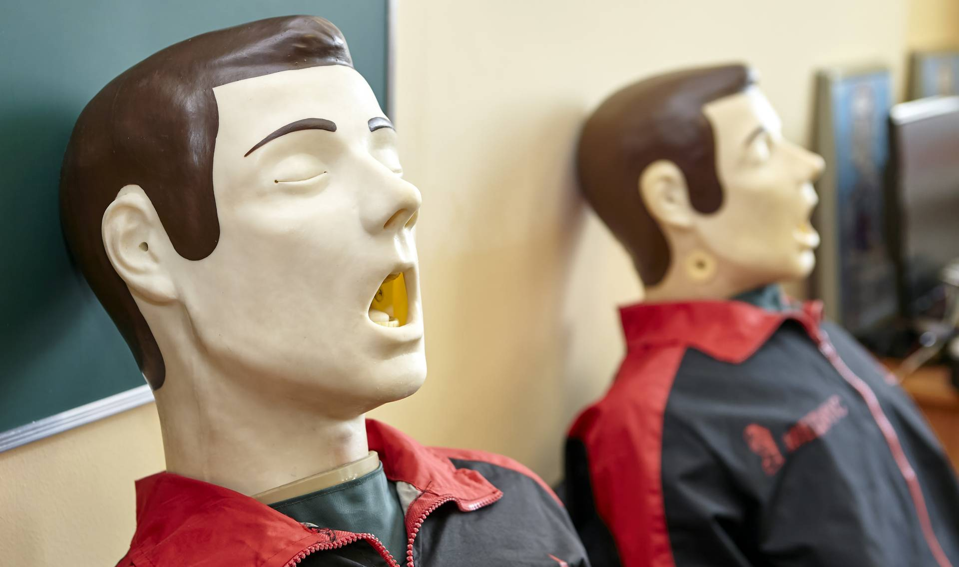physical mannequin for simulation