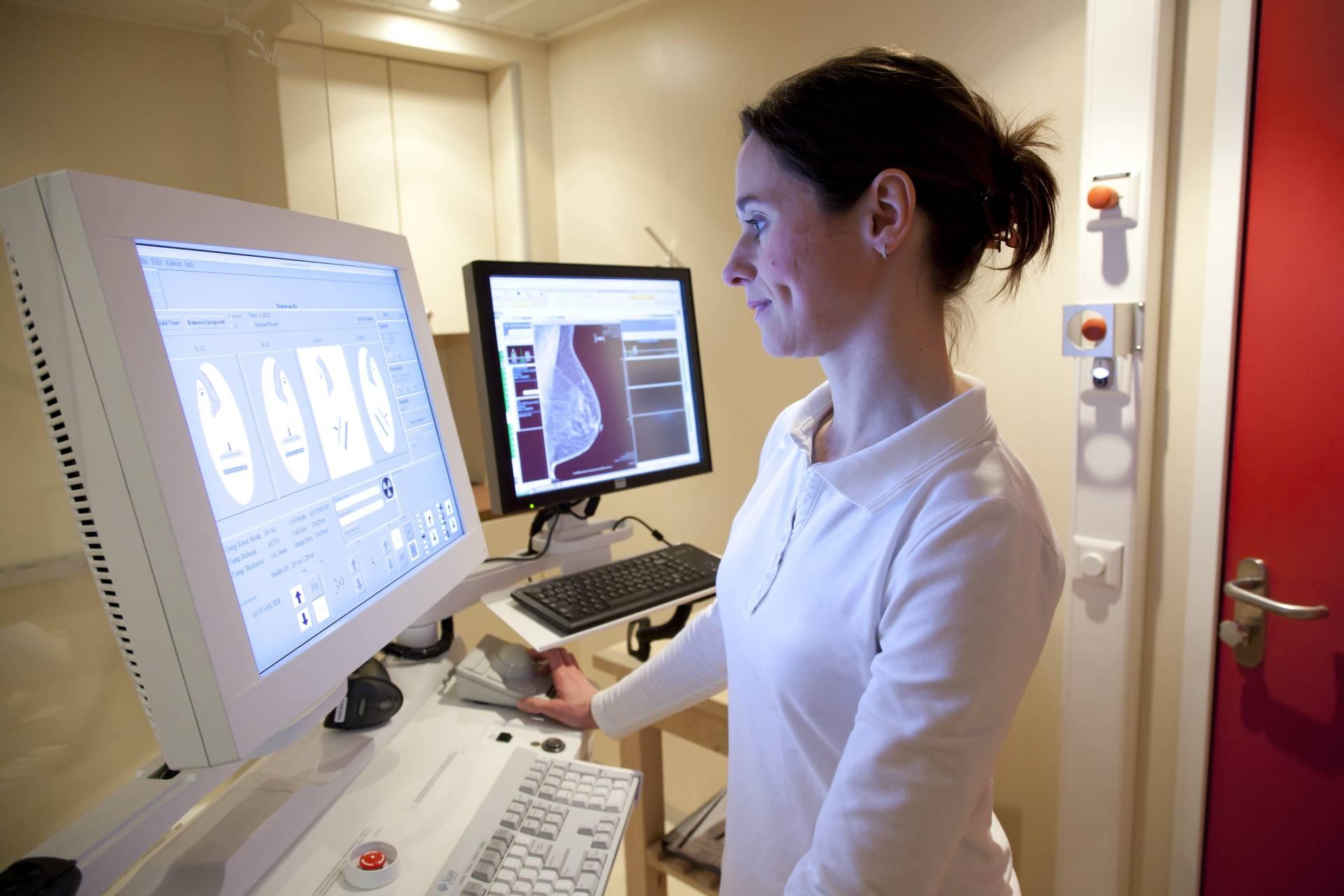 Radiographer examining mammogram
