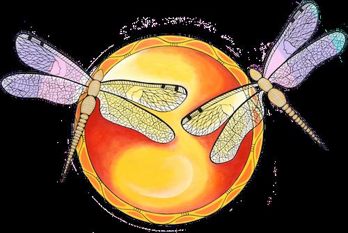 Mi'kmaq Fine Art of Dragon Fly