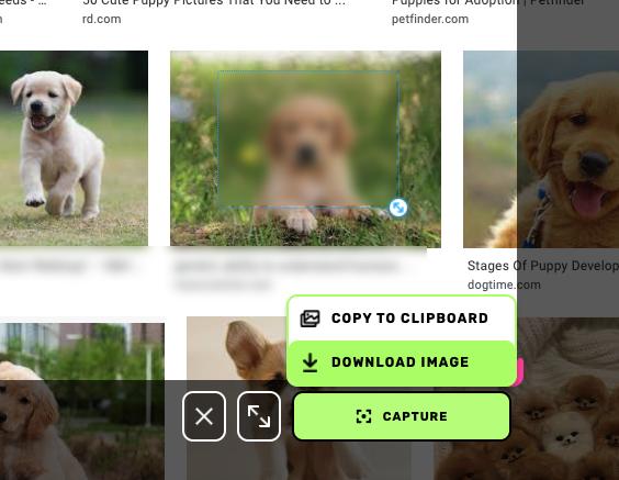 blur screenshot to hide personal or sensitive information