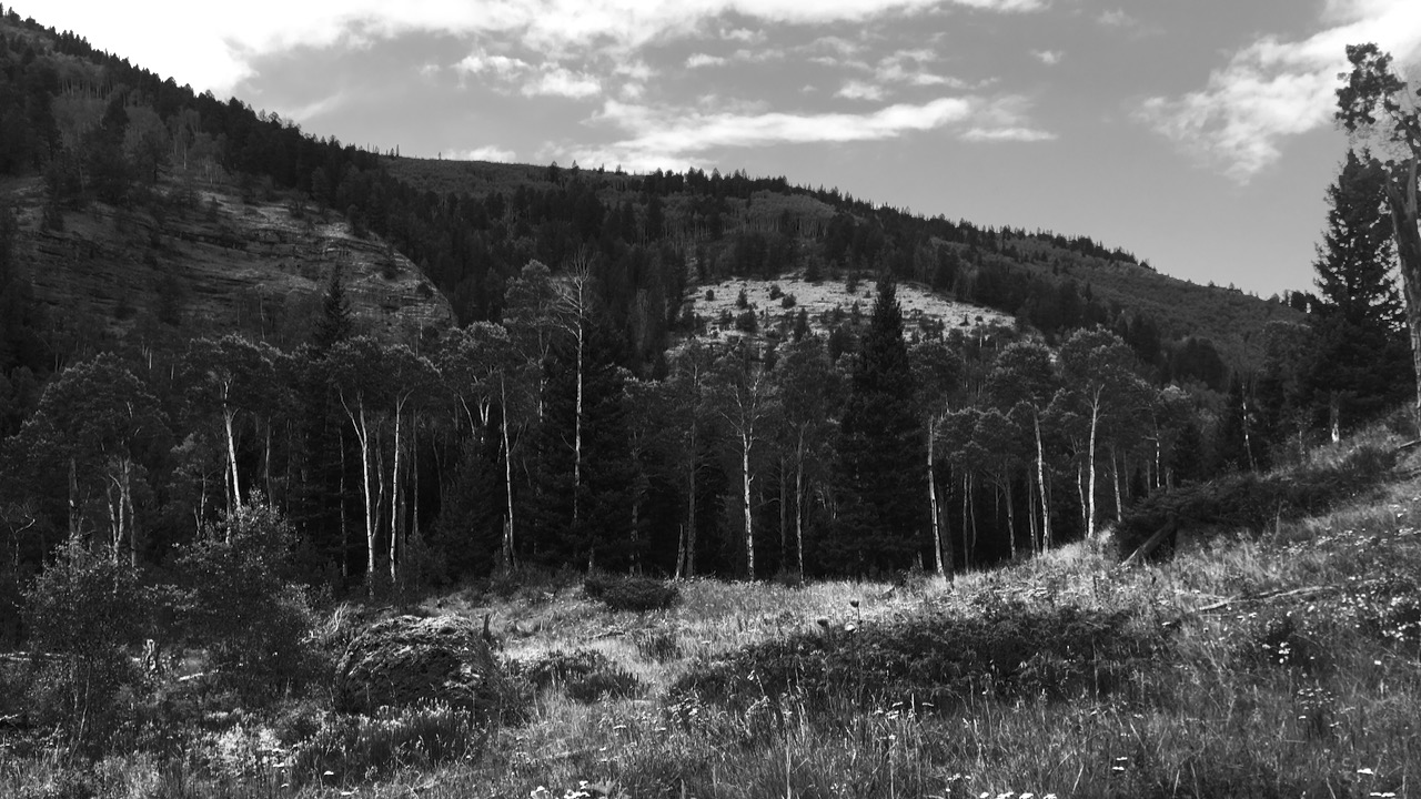 Mountain vista in Gunnison, Colorado