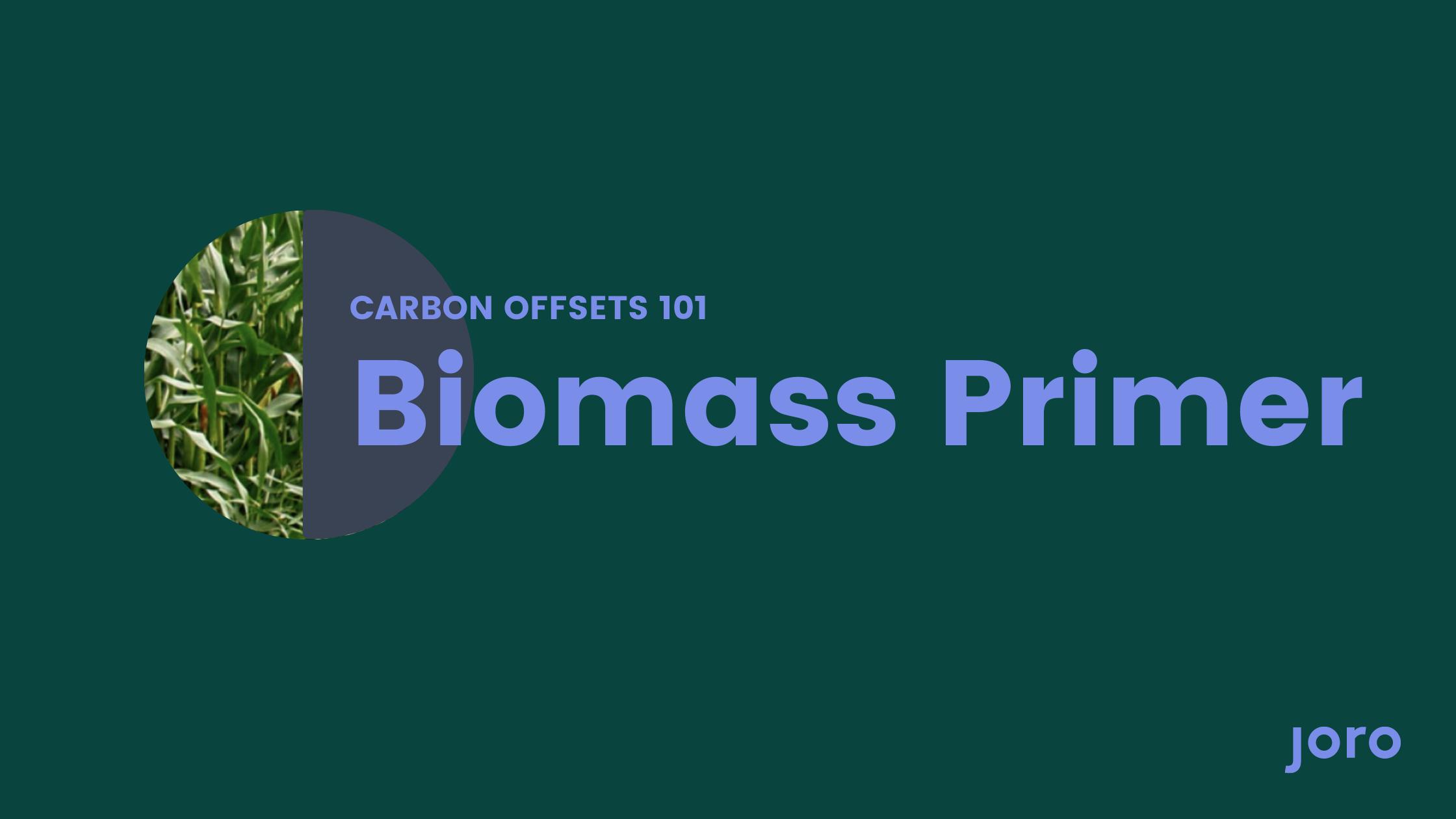 Carbon Offsets 101: Biomass Primer
