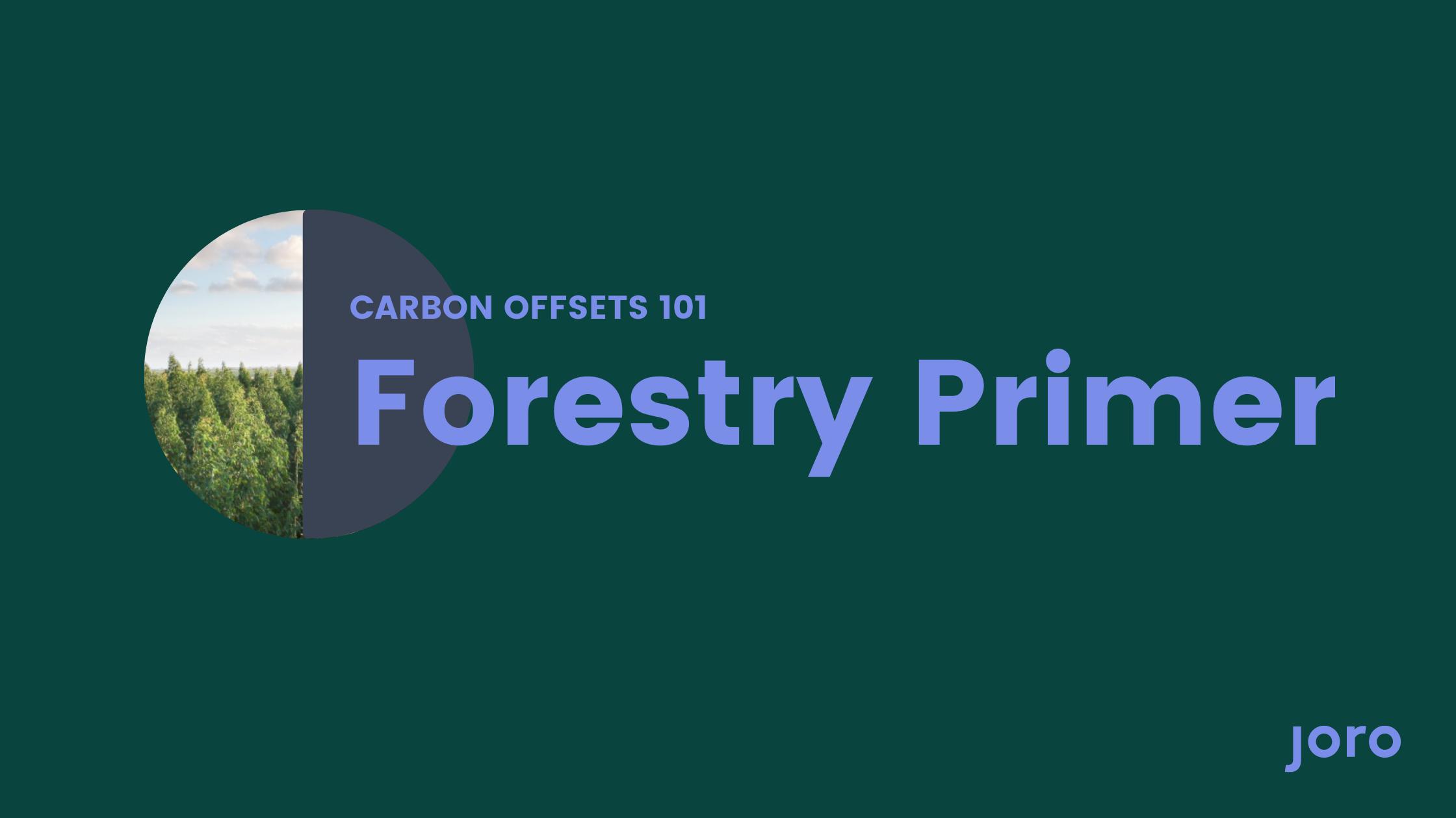 Carbon Offsets 101: Forestry Primer