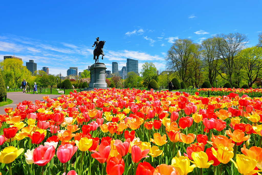 Mindful Adventuring: 36 Hours in Boston