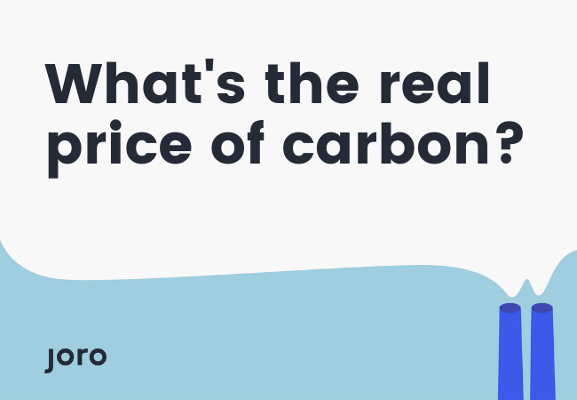 What's the Real Price of Carbon?